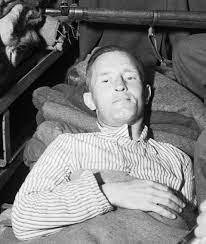William Joyce – Wikipedia