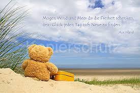 Mögen Wind Und Meer Teddy Am Meer Wwwstimmungs Bilderde