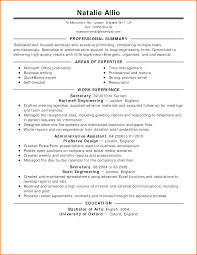 Cv Title Example Example Of How To Write A Resume Free Resume
