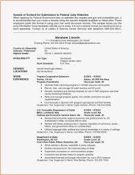 Job Application Portfolio Example 12 Portfolio Formats Examples Business Letter