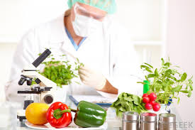 What Is Food And Nutrition Science With Pictures