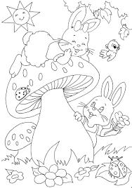 Coloriage Animaux Marins Imprimer