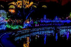 Cincinnati Zoo Tickets Festival Of Lights Pnc Festival Of Lights Cincinnati Zoo Come Visit Until Jan