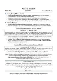 It Director Cio Sample Resume Executive Resume Writer Executive