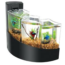 office desk fish tank. Captivating Fake Fish Tank For Office Feng Shui Full Size Of Desk O