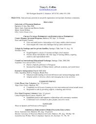 Usa Resume Sample Cv Example Usa Rome Fontanacountryinn Com