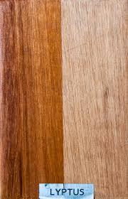 powers wood source lyptus wood flooring97 wood