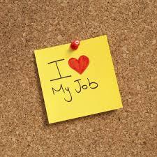 Why I Love My Job This Week Little Wanders