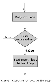 C While And Do While Loop With Examples