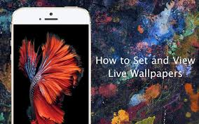 how to set live wallpapers on iphone 6s and iphone 6s plus iphone hacks you