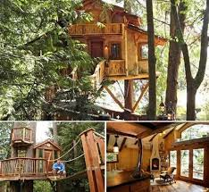 Tree House Plans Two Trees Lovely Tree House Plans Two Trees New 10