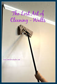 Clean Bathroom Walls 17 Best Ideas About Cleaning Painted Walls 2017 On Pinterest