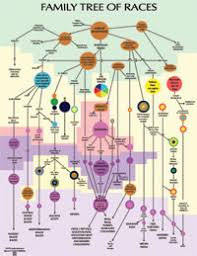 The Constantly Morphing Human Family Tree Mindful Webworks