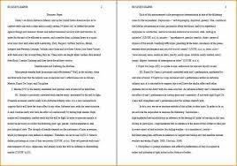 essay format internship essay format