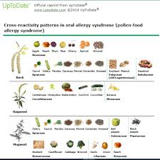 Pollen Food Allergy Chart Oral Allergy Syndrome Laurie Menk Otto Nd Mph