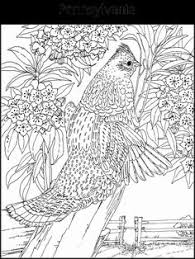 Small Picture state emblems coloring pages Homeschool Haven Pinterest