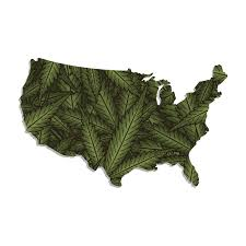 which u s states accept out of state mmj cards