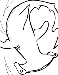 Small Picture Hammerhead Shark Coloring Page Handipoints