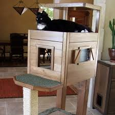 cat condo with high level cabin