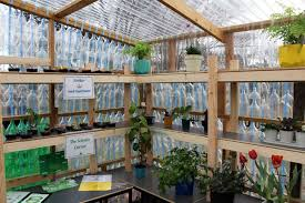greenhouse made from recycled plastic bottles