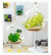 transpa ball globe shape clear hanging glass vase flower plants terrarium container micro landscape diy wedding home decor