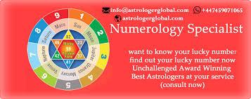 Best Indian Astrologer Services Poland Vedic Astrologer