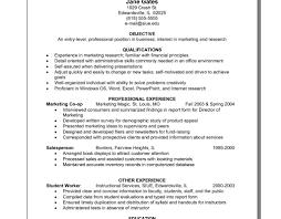 Comfortable Hybrid Resume Gallery Professional Resume Example