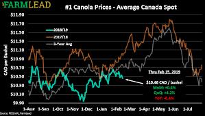 Soybean Canola Prices To Rebound Off The Lows Farmlead