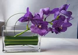 Orchid Arrangement, Purple Orchid, Fancy Flowers, Minneapolis, Twin Cities,  Flower Delivery, Event Flowers, Modern event flowers, Purple Orchid  Flowers, ...