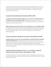 Executive Summary Template Word Gorgeous Big Data Cover Letter Fresh Basic Resume Template Free Beautiful