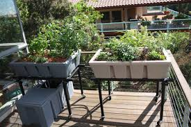 aquaponic gardening. aquaponic gardening uses 90% less water than soil-based because the e