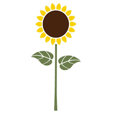 sunflower wall stencil for painting