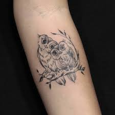 Two Owls Have Fallen In Love With Each Other Tattoo Mode