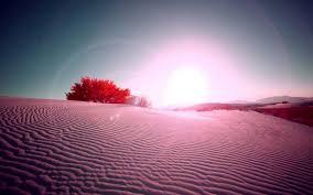 Free download Pink Desert Flare High ...