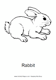Small Picture Rabbit Colouring Page To Print