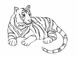 10 Bebe Tigre Coloriage