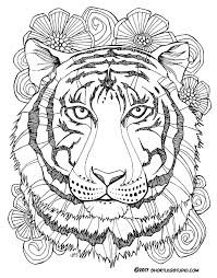 Small Picture New Tiger Coloring Sheets Short Leg Studio