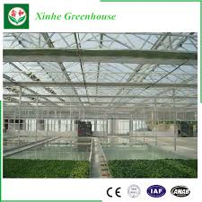 durable in use twin wall polycarbonate pc sheet greenhouse
