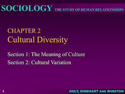 How Do Cultural Traits Cultural Complexes And Cultural Patterns Differ Amazing Decorating