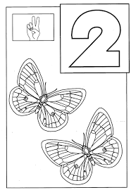 owl coloring page erfly coloring pages