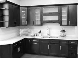 Modern Glass Kitchen Cabinets Black Kitchen Cabinets With Glass Doors Design Porter