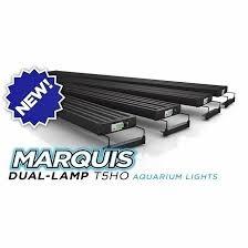 aquatic life dual lamp t5 ho marquis r aquarium light fixtures group