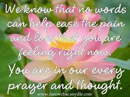 Condolences Quotes Gorgeous Sending Condolences Quotes 48 Images Royal Designs
