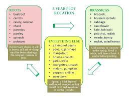 Crop Rotation Chart Garden Rotation Durbantainment Info