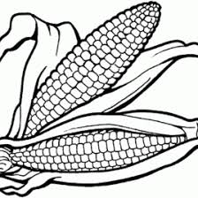 Small Picture Coloring Page Indian Corn Kids Drawing And Coloring Pages Marisa