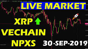XRP PRICE LIVE PRICE LIVE ON BITCOIN ...