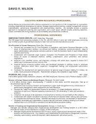 Digital Marketing Sample Resume Best Of Digital Resume Size Marketing Template Or General Objectives For