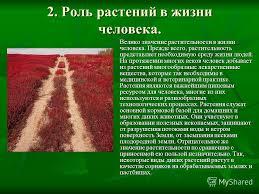 Презентация на тему Использование и охрана растительности  6 2