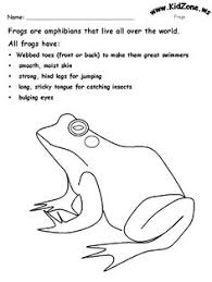 454e1ad324bda3e2dcd6408c4335648c frog facts science lessons amphibians and reptiles worksheets and posters pack teaching on graphing radical functions worksheet