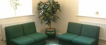 office tree. Office Tree O